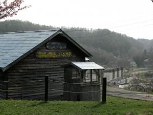 photo207